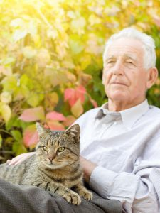 Homecare Long Island NY - Could Homecare be a Solution to Your Dad's Needs